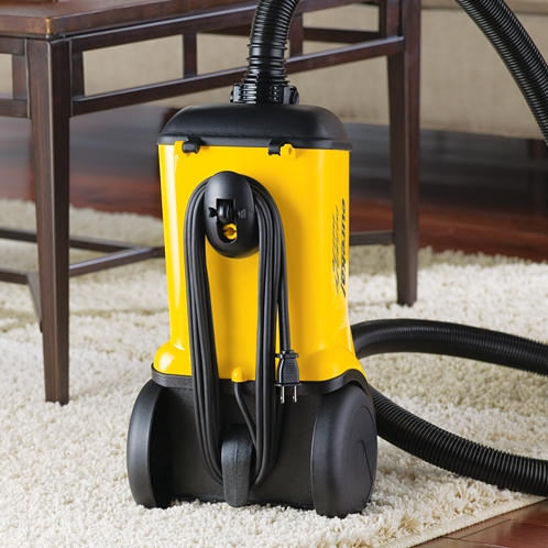 Eureka Mighty Mite 174 3670g Canister Vacuum Cleaner